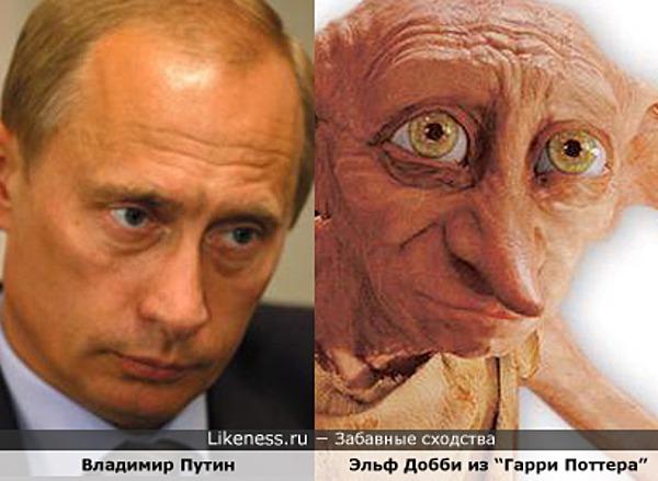 Владимир Путин похож на Эльфа Добби из «Гарри Поттера»