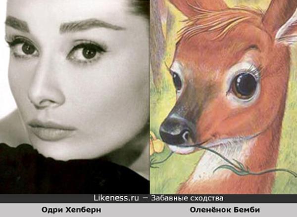 Одри Хепберн похожа на Олененка Бемби