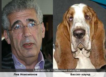 Лев Новоженов похож на Бассет-хаунда