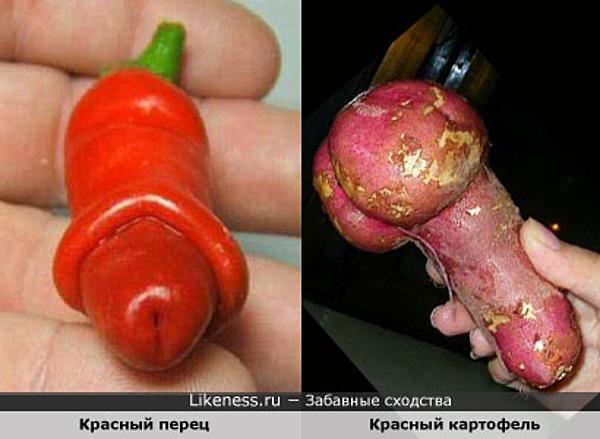 Красный перец похож на Красный картофель