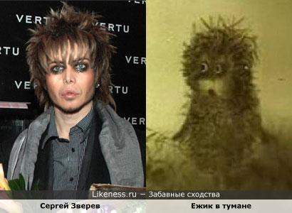 Знаменитости, похожие на героев мультфильмов: Сергей Зверев похож на Ежика в тумане