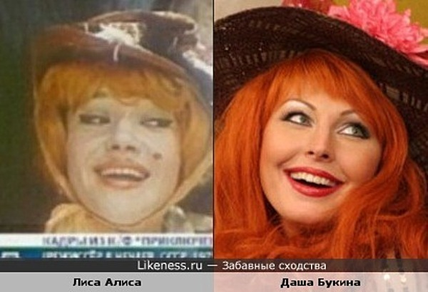 Лиса Алиса похожа на Дашу Букину