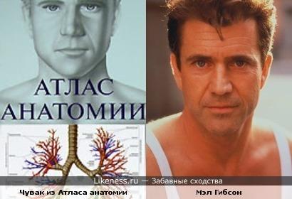Чувак с обложки Атласа Анатомии похож на Мэла Гибсона