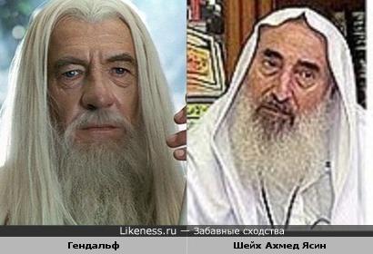 Шейх Ахмед Ясин похож на Гэндальфа