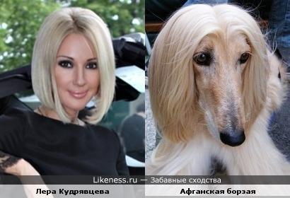 http://img.likeness.ru/uploads/users/1/Lera_Kudryavtseva_dog.jpg
