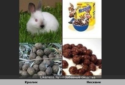"""""""Несквик"""