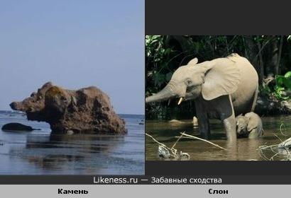 Камень похож на слона