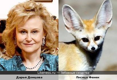 Дарья Донцова похожа на лисицу фенек