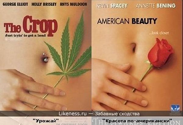 Постеры-двойники: Постер фильма Урожай похож на постер фильма Красота-по американски