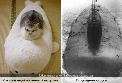 Кот лежащий на мягкой игрушке похож на подводную лодку