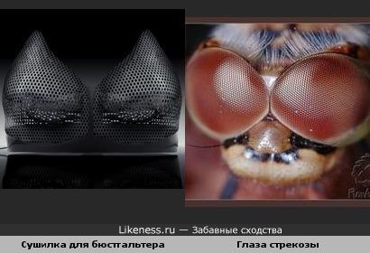 Сушильный аппарат похож на глаза стрекозы