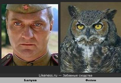 Балуев — Филин