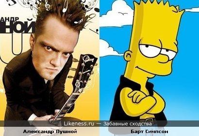 Александр Пушной похож на Барта Симпсона