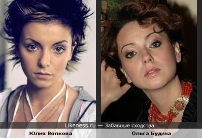 Юлия Волкова похожа на Ольгу Будину