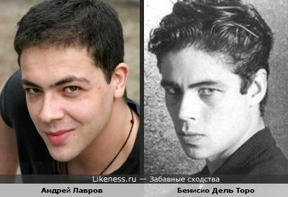 Андрей Лавров похож на Бенисио Дель Торо