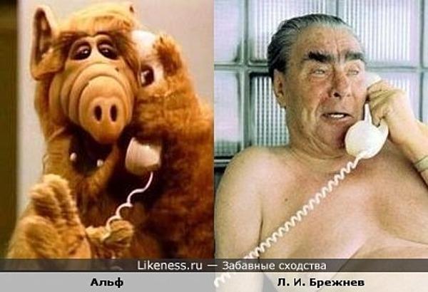 Альф похож на Л. И. Брежнева