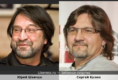 Юрий Шевчук похож на Сергея Кузина