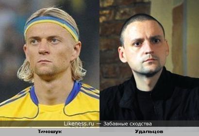 Анатолий Тимощук похож на Сергея Удальцова