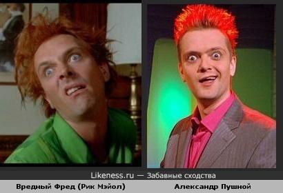 Александр Пушной похож на Вредного Фреда