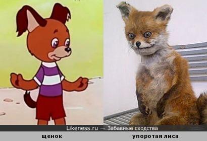 """Собачка из мультфильма """"Без этого нельзя"""