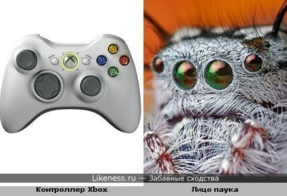 Контроллер Иксбокс похож на паука