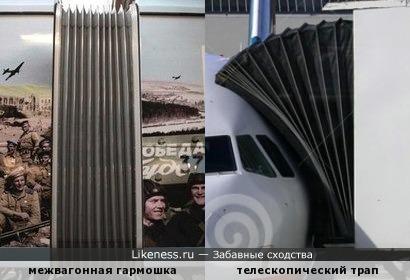 """""""Играй, гармонь - 1"""": на транспорте"""
