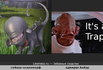 """Собака из мультфильма """"Планета 51"""