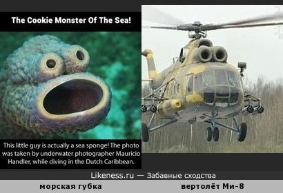 Морская губка из интернет-мема напоминает вертолёт Ми-8