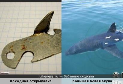 Старая походная открывалка напоминает акулу