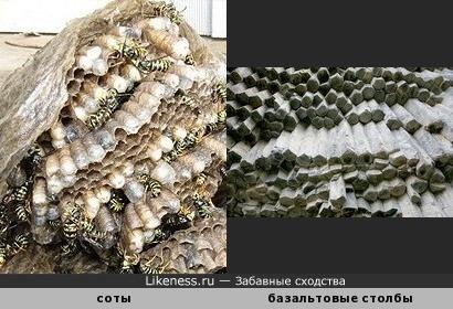 """Природные """"орга'ны"""": соты напоминают базальтовые столбы в ущелье Гарни в Армении"""