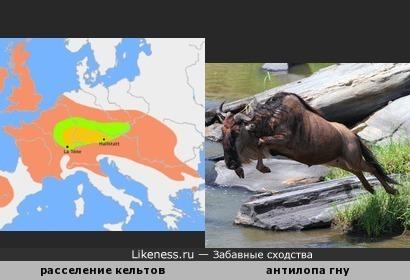 Территория расселения кельтов в 800-400 гг. до н.э. напоминает антилопу гну