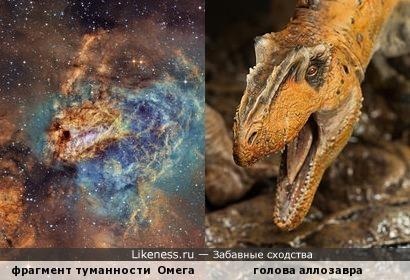 Фрагмент туманности Омега M17 (фото - Намибия, июнь 2012 г.) напоминает голову аллозавра