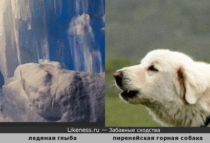 Игра света и тени: ледяная глыба, освещённая всполохом огня факира (полное фото - в комментарии), напоминает голову лающей собаки
