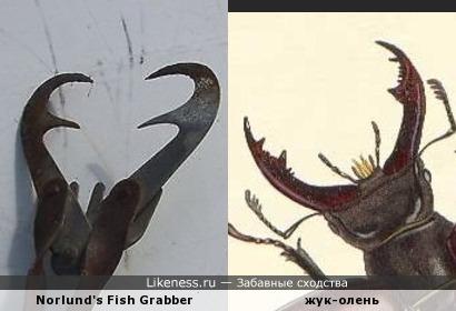 Винтажный хвататель рыбы напоминпет жука-оленя