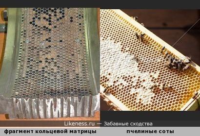 Фрагмент кольцевой матрицы для производства пеллет (топливных гранул) напоминает пчелиные соты