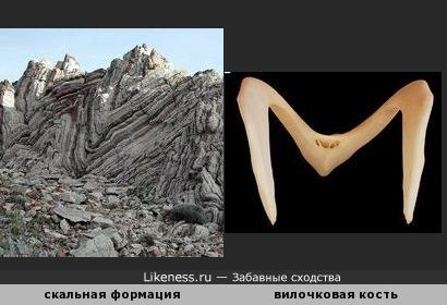 """Скальная формация на пляже Агиос Павлос (Крит) и вилочковая кость полулапчатого гуся напоминают букву """"М"""""""