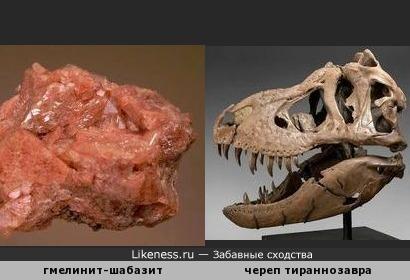 Минерал гмелинит-шабазит напоминает череп тираннозавра