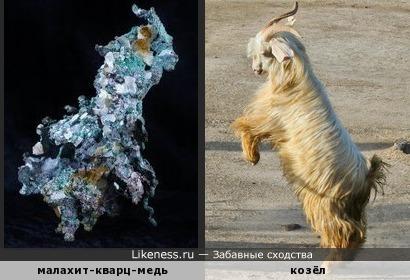 Минерал малахит-кварц с вкраплениями самородной меди напоминает козла
