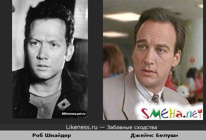 Джеймс Белуши похож на Роба Шнайдера