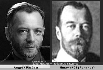 Николай II (Романов) похож на Андрея Разбаш