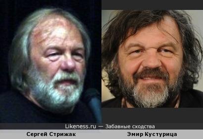 Сергей Стрижак похож на Эмира Кустурицу