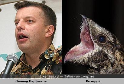 Если Ксения Собчак - лошадь, то Леонид Парфёнов - козодой!