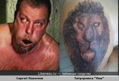 Лев похож на Пахомова
