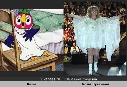 """Кеша в """"наряде"""" похож на Аллу Пугачёву"""