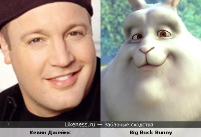 """Кевин Джеймс похож на Большого Зая (""""Big Buck Bunny """")"""