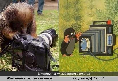 Фотолюбители