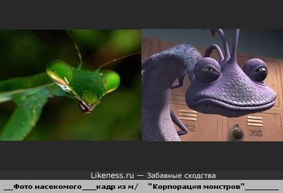 """Фото насекомого напомнило Рэндалла из м/ф """"Корпорация монстров"""""""