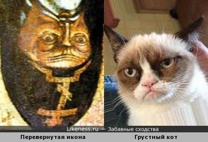 Перевернутая икона святителя Митрофана Воронежского и грустный кот