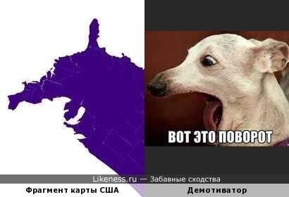 Фрагмент карты США напомнил собачку