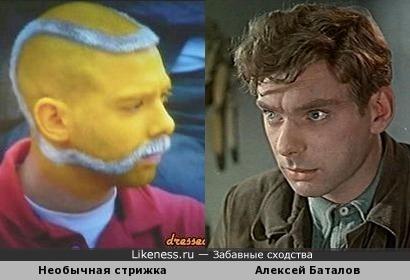 Необычная стрижка Алексея Баталова